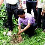 Tree_plantation